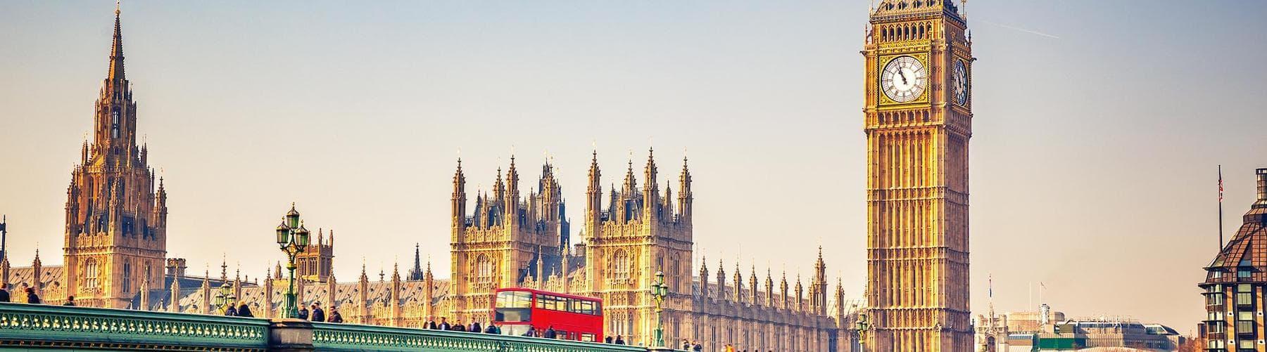 British Vision